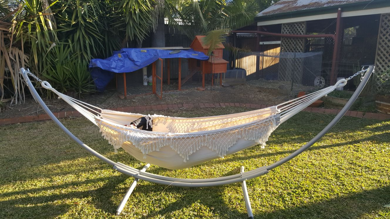 Xl Free Standing Hammock White Canvas Hammock With